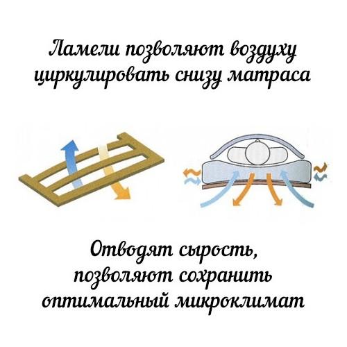 Ортопедическое основание «Классик.MT»